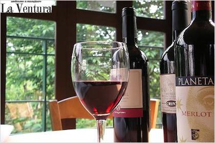 v_wine_s